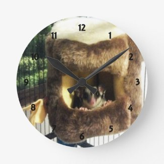 Sugar Glider in Furry Tree Truck Hanging Bed Wall Clock