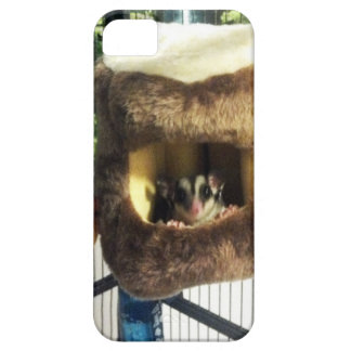 Sugar Glider in Furry Tree Truck Hanging Bed iPhone SE/5/5s Case
