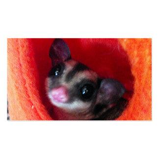 Sugar Glider in Orange Hanging Bed Business Card