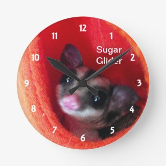 Sugar Glider in Orange Hanging Bed Round Wallclocks