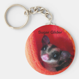 Sugar Glider in Orange Hanging Bed Keychain
