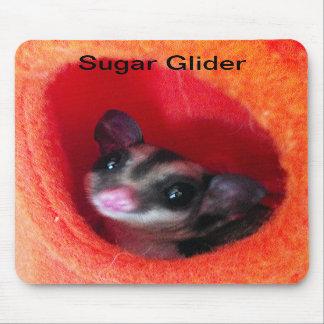 Sugar Glider in Orange Hanging Bed Mouse Pad