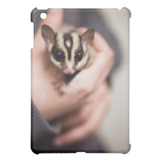 Sugar Glider iPad case