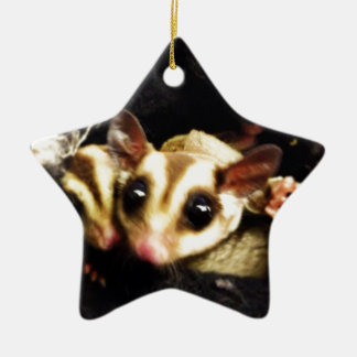 sugar glider photo design ceramic ornament