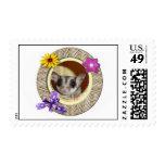 Sugar Glider Postage Stamp