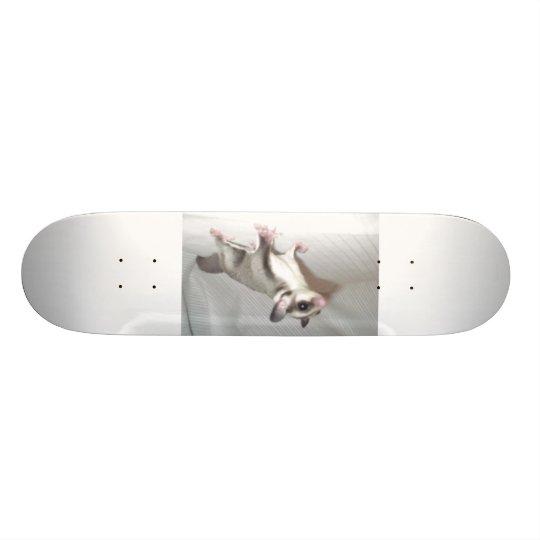 sugar glider skate boars skateboard