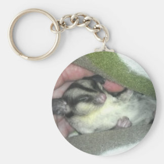 Sugar Glider Sleeping in Blanket Keychain