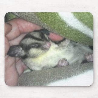 Sugar Glider Sleeping in Blanket Mouse Pad