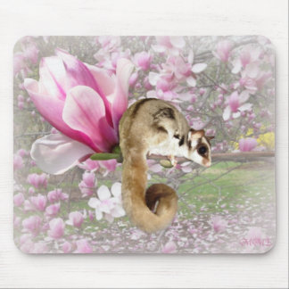 Sugar Glider Sweetness Mouse Mats