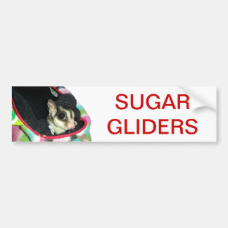 Sugar Glider Wearing a Hat Bumper Sticker