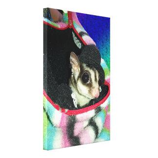 Sugar Glider Wearing a Hat Canvas Print