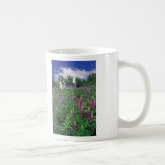 Sugar Hill Lupines, White Mountains Coffee Mug