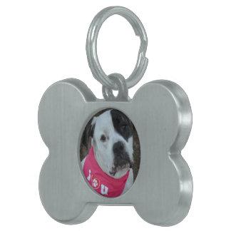 Sugar Key Chain Pet ID Tag