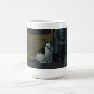 Sugar kitty of light classic white coffee mug