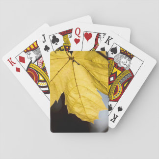 Sugar maple, fall playing cards