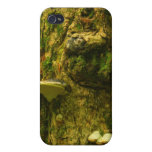 Sugar Maple Old Growth Trunk iPhone 4 Case