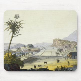 Sugar Plantation, Antilles (colour engraving) Mouse Pad