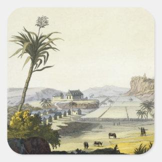 Sugar Plantation, Antilles (colour engraving) Square Sticker