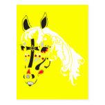 sugar skull horse postcard