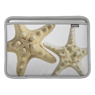 Sugar starfish on a thorny starfish MacBook sleeve