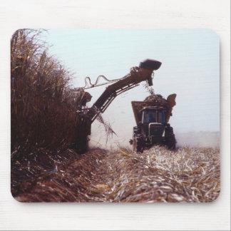 Sugarcane harvest mouse pad
