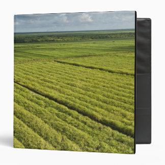 Sugarcane Plantations, Guyana Binder