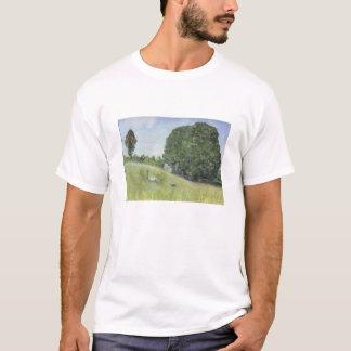 Sugarhouse Hill T Shirt