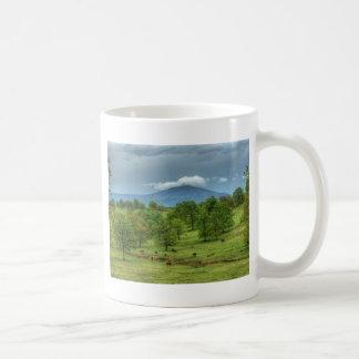 Sugarloaf Mountain Mug