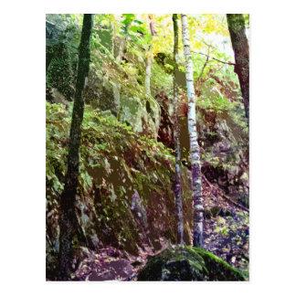 Sugarloaf Passage Postcard