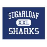 Sugarloaf Sharks Elementary Summerland Key Postcards