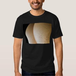 Suggestive Eggs Tee Shirt