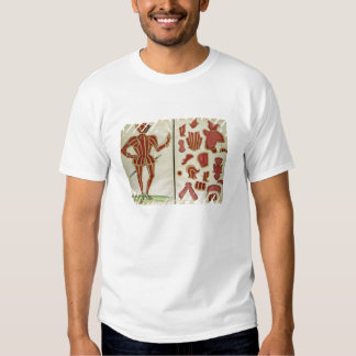 Suit of Armour for the Earl of Leicester from `An T Shirts