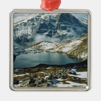 Suiza, Grindelwald, montañas de Bernese, visión Adorno Navideño Cuadrado De Metal