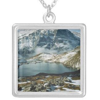 Suiza, Grindelwald, montañas de Bernese, visión Collar Plateado