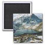 Suiza, Grindelwald, montañas de Bernese, visión Imán Cuadrado