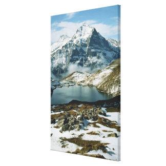 Suiza, Grindelwald, montañas de Bernese, visión Lona Envuelta Para Galerias