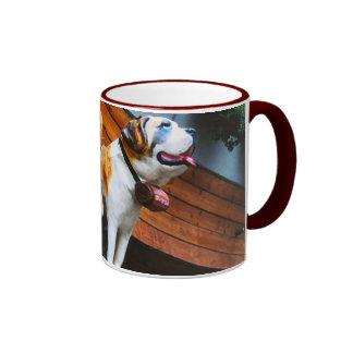 Suiza, muestra de la tienda del perro de St Taza De Dos Colores