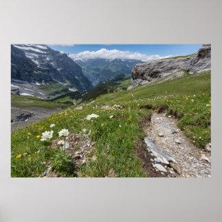 Suiza - valle de Lauterbrunnen - poster