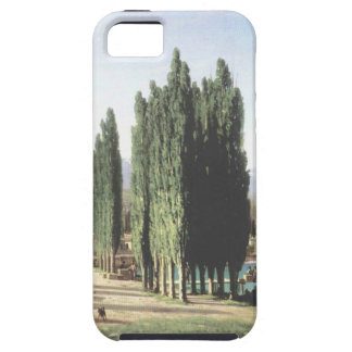 Sukhum-Kale by Vasily Vereshchagin iPhone SE/5/5s Case