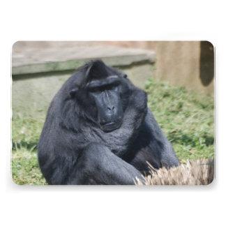 Sulawesi Macaque Custom Invitation
