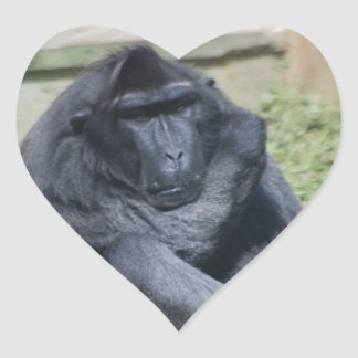 Sulawesi Macaque Heart Sticker