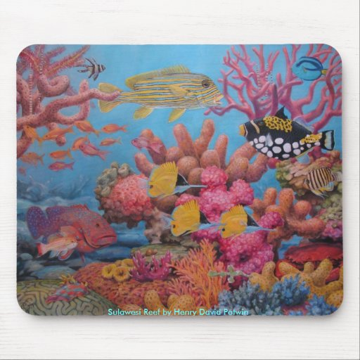 Sulawesi Reef Mouse Mats