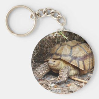 Sulcata Tortoise Chillin' Keychain