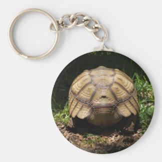 Sulcata Tortoise Gifts Key Chain