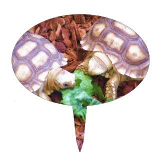 Sulcata Tortoise Hatchlings Cake Picks