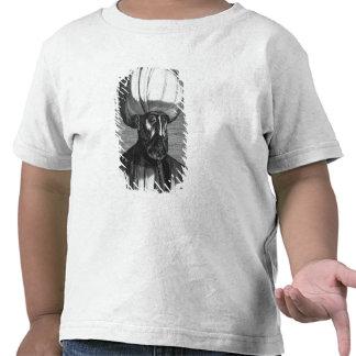 Suleiman el magnífico camisetas