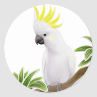 Sulfur Crested Cockatoo Sticker