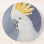 Sulfure el regalo con cresta del Cockatoo para el
