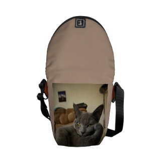 sulky grey cat courier bag