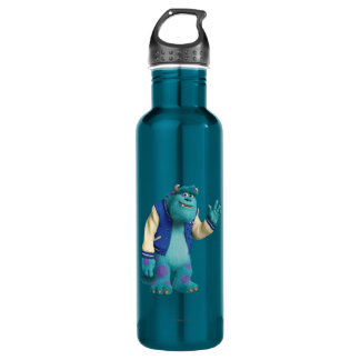 Sulley Waving Stainless Steel Water Bottle